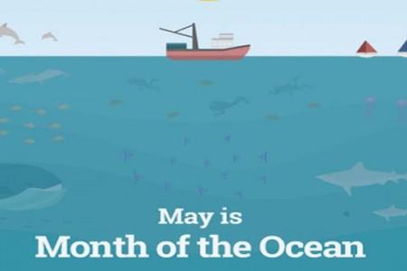 """Ocean Month celeb bats for """"detoxifying"""" oceans"""